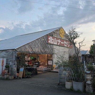 北山ナーセリー.jpg